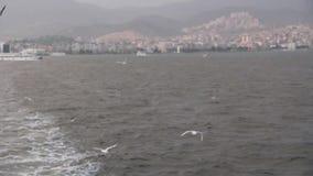 De stad van Izmir, die op het overzees, zeemeeuwvlieg, Turkije reizen stock videobeelden