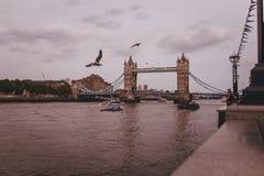 De stad van Londen vibes royalty-vrije stock foto