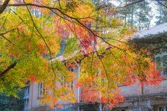 De Stad van Lushanguling in de Herfst Royalty-vrije Stock Afbeelding