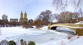 De Stad van New York - Central Park in de Winter stock foto