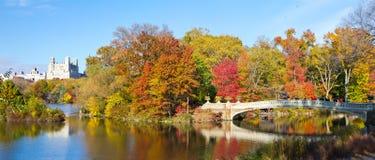 De Stad van New York - Central Park Panoramisch Landschap stock foto's