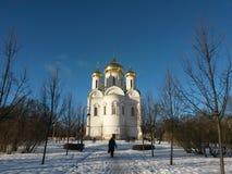 De stad van Pushkin Royalty-vrije Stock Fotografie