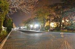 De Stad van Sebastopol Royalty-vrije Stock Afbeeldingen