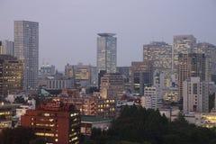 De Stad van Seoel Royalty-vrije Stock Foto