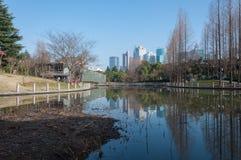 De stad van Shanghai bij het nieuwe gebied van Pudong Stock Foto