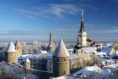 De stad van Tallinn. Estland. Sneeuw op bomen in de winter royalty-vrije stock afbeelding
