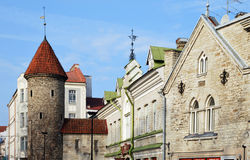 De stad van Tallinn ols Stock Fotografie