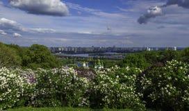 De stads lilac panorama van Kiev Royalty-vrije Stock Foto's