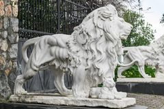 De stadsbeeldhouwwerken van de twee witte leeuwen en een leeuw werpen bij de ingang Lokaal oriëntatiepunt stock foto