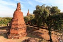 De stadsbouw blijft, blijft het standbeeld van Boedha van Wat Phra Sri Sanphet Temple in Ayutthaya, Thailand (Si Ayutthaya&#x van Royalty-vrije Stock Foto