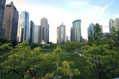 De stadslandschap van Shanghai Lujiazui Stock Afbeelding