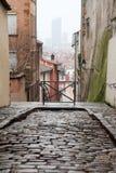 De stadsmeningen van Lyon Stock Foto