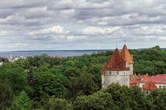 De Stadsmuur van Tallinn Stock Afbeeldingen