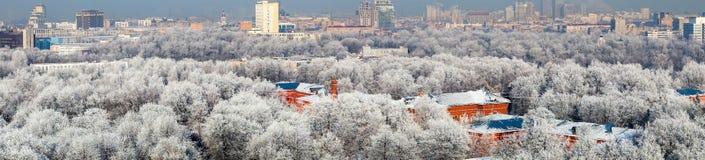De stadspanorama van Moskou van hoog punt Stock Foto's