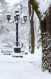 De stadspark van de winter Royalty-vrije Stock Afbeeldingen