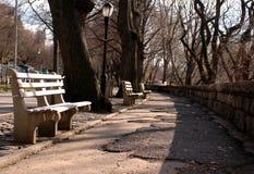De stadspark van New York Stock Foto's