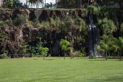 De stadspark van Ribeiraopreto, akadr. Luis Carlos Raya Stock Afbeeldingen