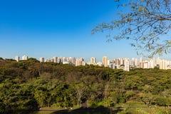 De stadspark van Ribeiraopreto, het Park van akacurupira Stock Fotografie