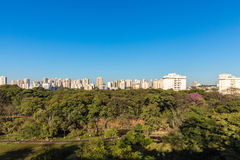 De stadspark van Ribeiraopreto, het Park van akacurupira Royalty-vrije Stock Foto's