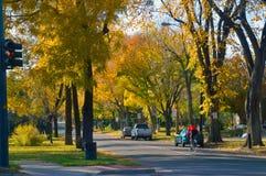 De stadsstraat van Denver in Daling Stock Afbeelding