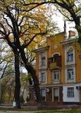 De stadsstraten van Alma Ata Royalty-vrije Stock Foto's
