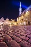 De Stadsvierkant van Tallinn Estland Stock Afbeeldingen