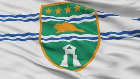 De Stadsvlag van Surrey, de Britse Colombia Provincie van Canada, Close-upmening Vector Illustratie
