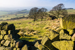 De Staffordshire van de Voornsschuur Heiden Staffordshire Stock Fotografie