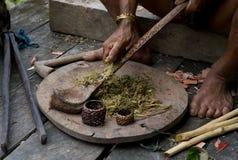 De stam van mensenmentawai bereidt vergift voor de pijlen voor de jacht voor Stock Afbeeldingen