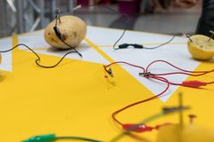 De STAMactiviteit van de aardappelbatterij met aardappels, citroenen, krokodillecl stock afbeelding