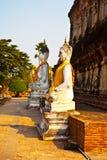 De standbeelden van Boedha bij de tempel van Wat Yai Chai Mongkol in Ayutthay Royalty-vrije Stock Afbeeldingen
