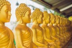 De standbeelden van Boedha, Gezicht van gouden Boedha, Thailand, Azië Stock Afbeeldingen