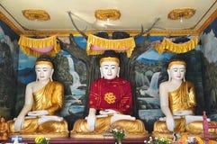 De standbeelden van Boedha van Shwe-de Pagode van Kropdaw, Yangon, Myanmar Stock Afbeelding