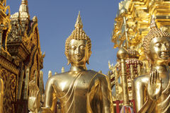 De standbeelden van Boedha in Wat Phra That Doi Suthep in Chiang Mai Stock Foto