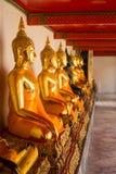 De standbeelden van zittingsboedha in Wat Pho Stock Afbeelding