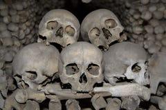 De stapel van de schedel Stock Foto