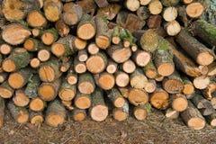 De stapel van het brandhout stock fotografie