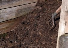 De stapel van het compost Stock Afbeelding