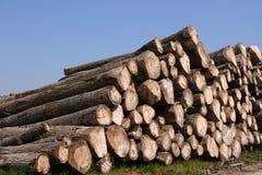 De stapel van het hout stock afbeelding
