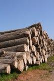 De stapel van het hout royalty-vrije stock afbeeldingen