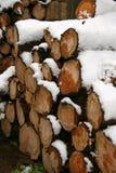 De stapel van het logboek die in sneeuw wordt behandeld stock foto's
