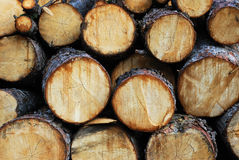 De stapel van het timmerhout stock fotografie