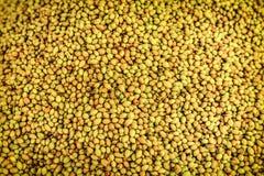 De stapel van pistachenoten schikt als achtergrond Stock Foto's