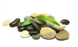 De stapel van stenen en bamboe doorbladert op wit Royalty-vrije Stock Foto's