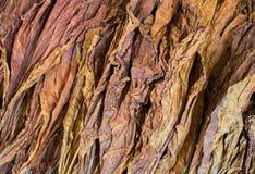 De stapel van tabaksbladeren op de vertoning van de ecowinkel Droge ruwe bladeren van tabak voor met de hand gemaakte sigaretten Royalty-vrije Stock Afbeeldingen