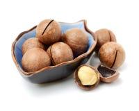 De stapel van verse macadamia notenrijken in voedingsmiddelen met sommige gehele geschilde noten, sommige noten nog in hun shells royalty-vrije stock afbeelding