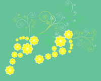 De stappen van de bloem Royalty-vrije Stock Foto's