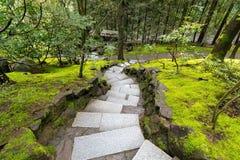 De Stappen van de granietsteen langs Bemost Groen Landschap royalty-vrije stock afbeelding