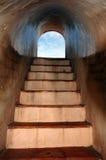 De stappen van de kelderverdieping Stock Fotografie