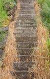 De stappen van de steen Stock Afbeeldingen